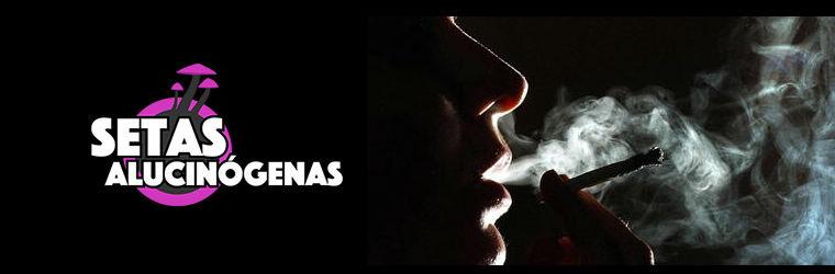Vaporizadores, la mejor forma para fumar
