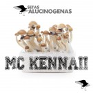 venta oline kit setas mc kennaii