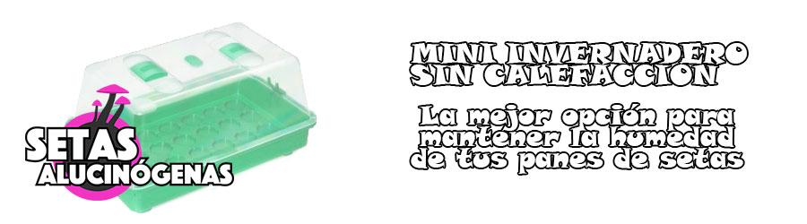 Mini invernadero para mantener la humedad